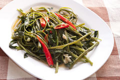 Stir Fried Water Spinach. In the white plate Royalty Free Stock Photos