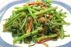 Stir Fried Water Spinach / Morning Glory With Dry Shrimp / Seafood, Thai Food Royalty Free Stock Photography