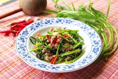 Stir Fried Water Spinach. On plate Thai food Royalty Free Stock Photos