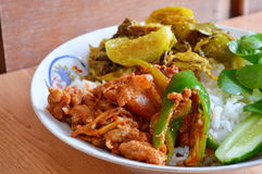 Stir fried wild boar with red curry stock photo