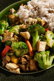 Stir Fry. Vegetarian Stir fry on a plate Royalty Free Stock Photo