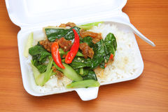 Stir fry chinese broccoli and crispy pork with rice Royalty Free Stock Photography