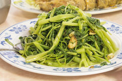 Stir Fry Chinese Kangkong Vegetable Closeup. Stir Fry Chinese Kangkong Green Vegetable with Garlic Dish Closeup Stock Images