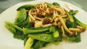 Stir-fry kailan with mushroom Royalty Free Stock Photography