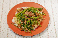 Stir-fry Mutton with rice Stock Photo