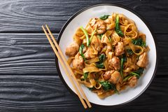 Stir Fry Of Noodles With Chicken, Chinese Broccoli And Egg Close-up On A Plate. Thai Pad See Ew. Horizontal Top View Royalty Free Stock Images