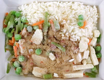 Stir Fry Rice Chicken Vegetables Frozen Royalty Free Stock Image