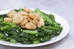 Stir Fry Scallops and Chinese Broccoli Vegetable Royalty Free Stock Photos