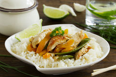 Stir-fry with Turkey. And vegetables stock image