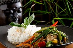 Stir Fry vegetable/Chicken with Rice. On the plate Stock Image