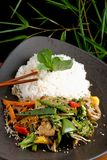 Stir Fry vegetable/Chicken with Rice Royalty Free Stock Photography