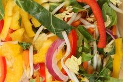 Stir fry vegetables closeup. Closeup of stir fry vegetables Stock Photos