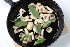 Stir frying mushrooms Royalty Free Stock Photos