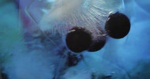 Stiring in un vetro con la bevanda fredda, calce, limone, uva passa, ghiaccio Primo piano stock footage
