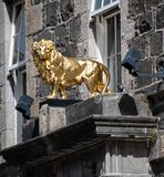 A Golden lion Statuette royalty free stock photography