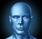 Stirnseitenansicht des menschlichen Kopfes Stockfoto