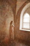 Stirra in i vakans Royaltyfria Bilder