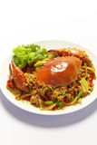 Stirred Fried Crab with Curry Powder Stock Photo