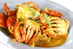 Stirred Fried Crab Stock Images