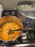 Stirring cooked peaches Stock Image