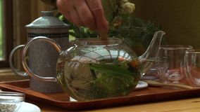 Stirring Liquid and Herbs in Glass Teapot. Steady, medium wide shot of hands stirring liquid and herbs in a teapot stock video