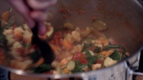 Stirring Minestrone Soup stock video
