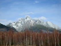 Stit de Lomnicky a alto Tatras foto de archivo
