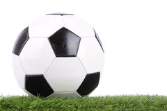 Stitch leather soccer ball Stock Photos