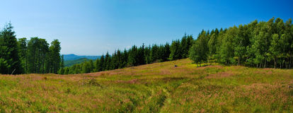 Stitched Panorama of mountains meadow Royalty Free Stock Photography