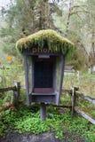 Stivale del telefono in parco nazionale Fotografie Stock