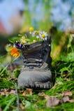 Stivale e fiori Fotografia Stock Libera da Diritti