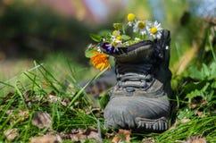 Stivale turistico con i fiori Immagini Stock Libere da Diritti