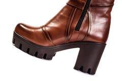 Stivali Brown delle donne Immagini Stock