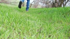 Stivali d'uso della persona e camminare sull'erba verde nella foresta video d archivio