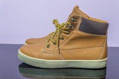 Stivali degli uomini Fotografie Stock