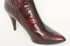 Stivali delle signore Fotografia Stock Libera da Diritti