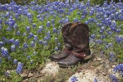 Stivali di cowboy con i denti cilindrici in un campo dei bluebonnets di Texas Fotografie Stock Libere da Diritti