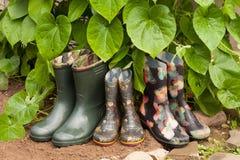 Stivali di gomma con la pianta delle foglie verdi Fotografia Stock Libera da Diritti