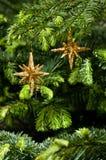 stjärna för form för julguldprydnad Arkivfoto