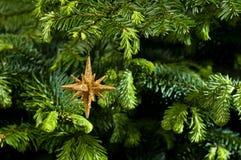 stjärna för form för julguldprydnad Arkivfoton