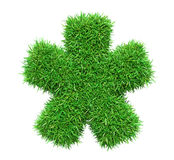 Stjärna för grönt gräs Arkivfoto