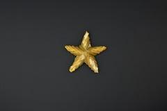 Stjärna från sugrör Arkivfoton