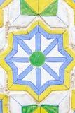 Stjärna- och blommabakgrund Royaltyfri Fotografi