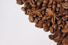 Stjärnaanis som ligger på kaffekorn royaltyfri bild