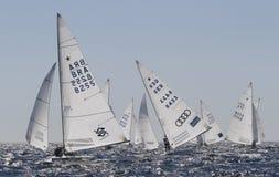 Stjärnaclas som seglar regatta Royaltyfri Fotografi