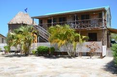 Stjärnafiskö, Belize Arkivfoton