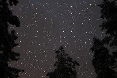 Stjärnahimmel Arkivfoton