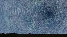 Stjärnaslingor som sparas över med det ensamma trädet Startrails för natthimmel Arkivbild