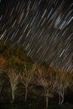 stjärnatrail arkivfoto