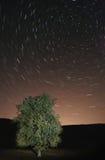 stjärnatrails royaltyfri fotografi